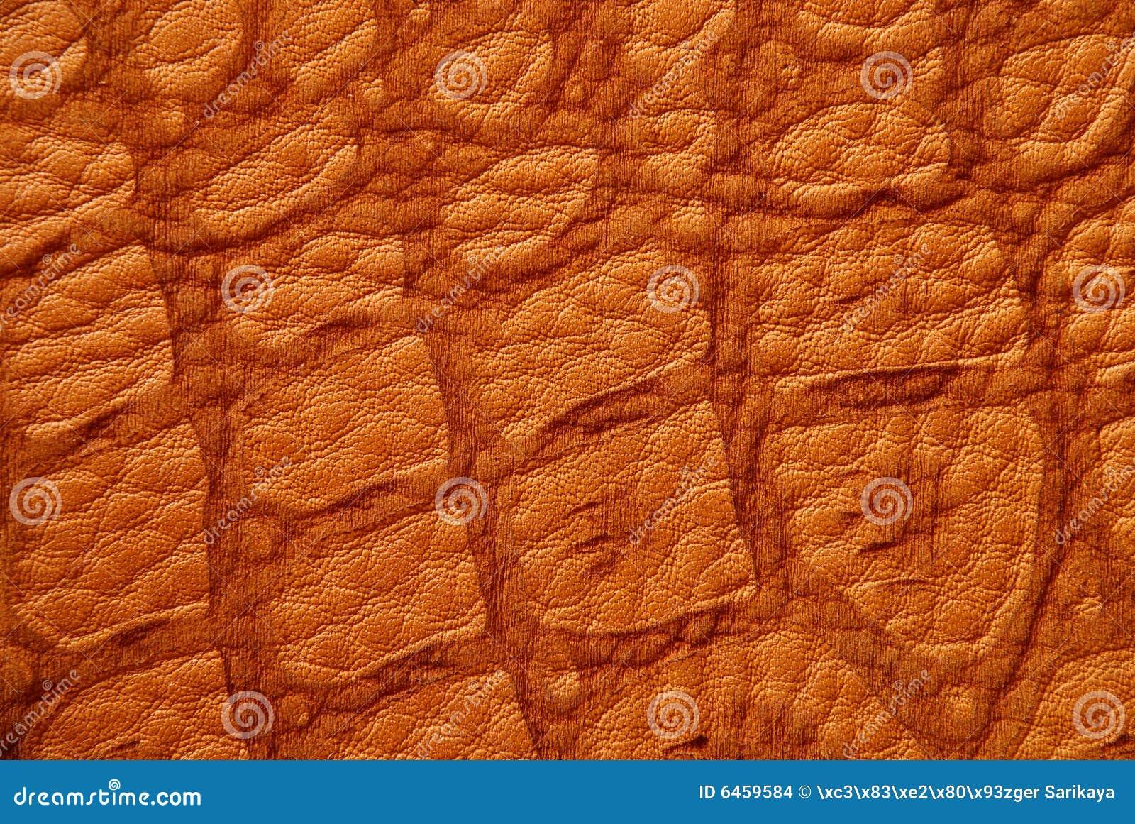 Skóra krokodyla textured