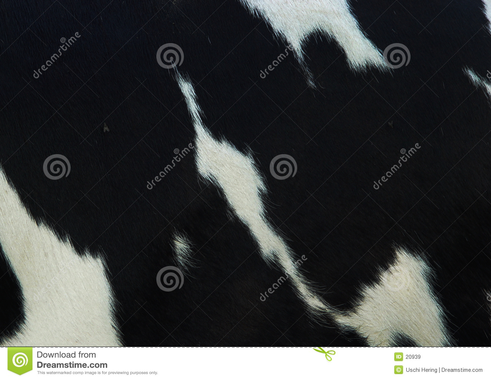 Skóra wołowa