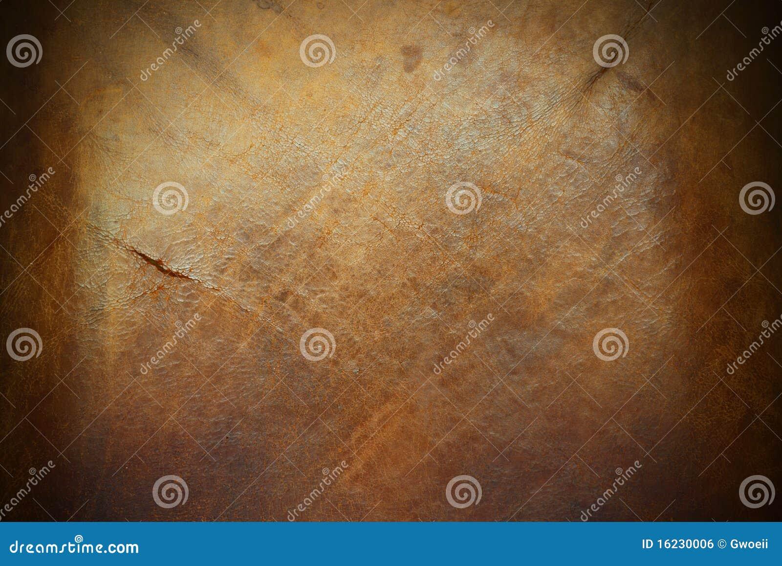 Skóry wołowej skóra wietrzał