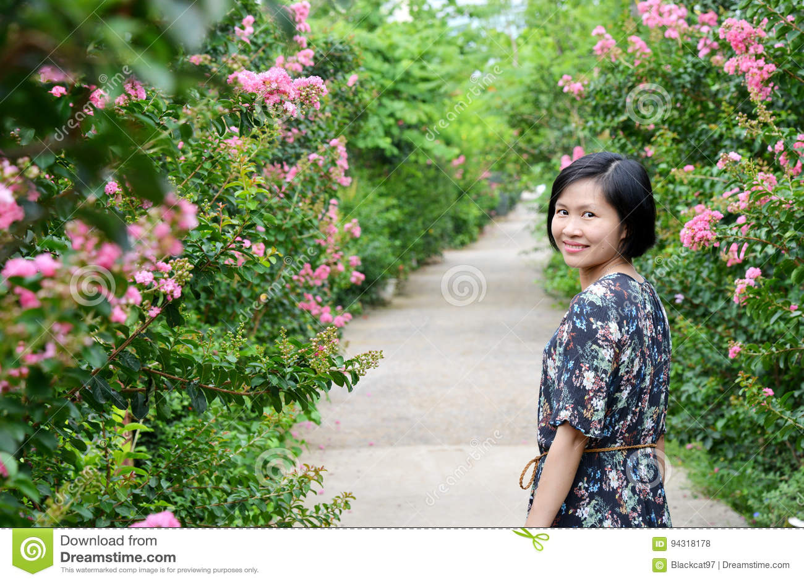 Skönhet i vägen av blomman för kräppmyrten