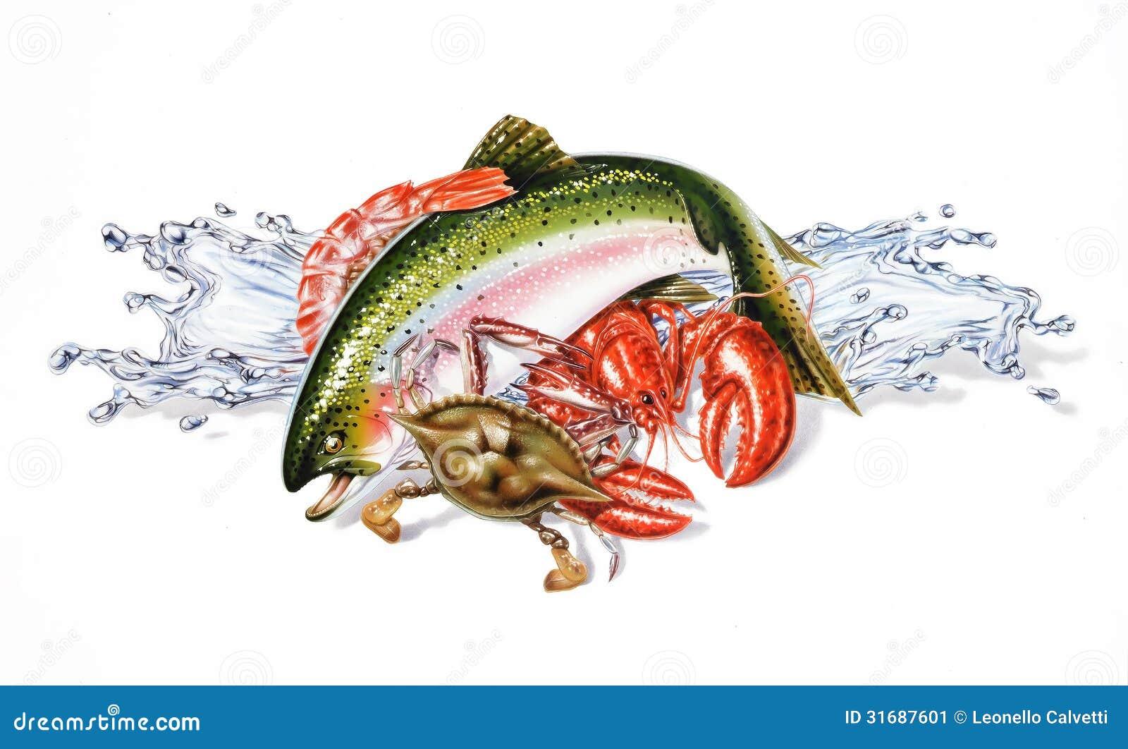 Skład różny owoce morza i ryba, z wodnymi pluśnięciami.