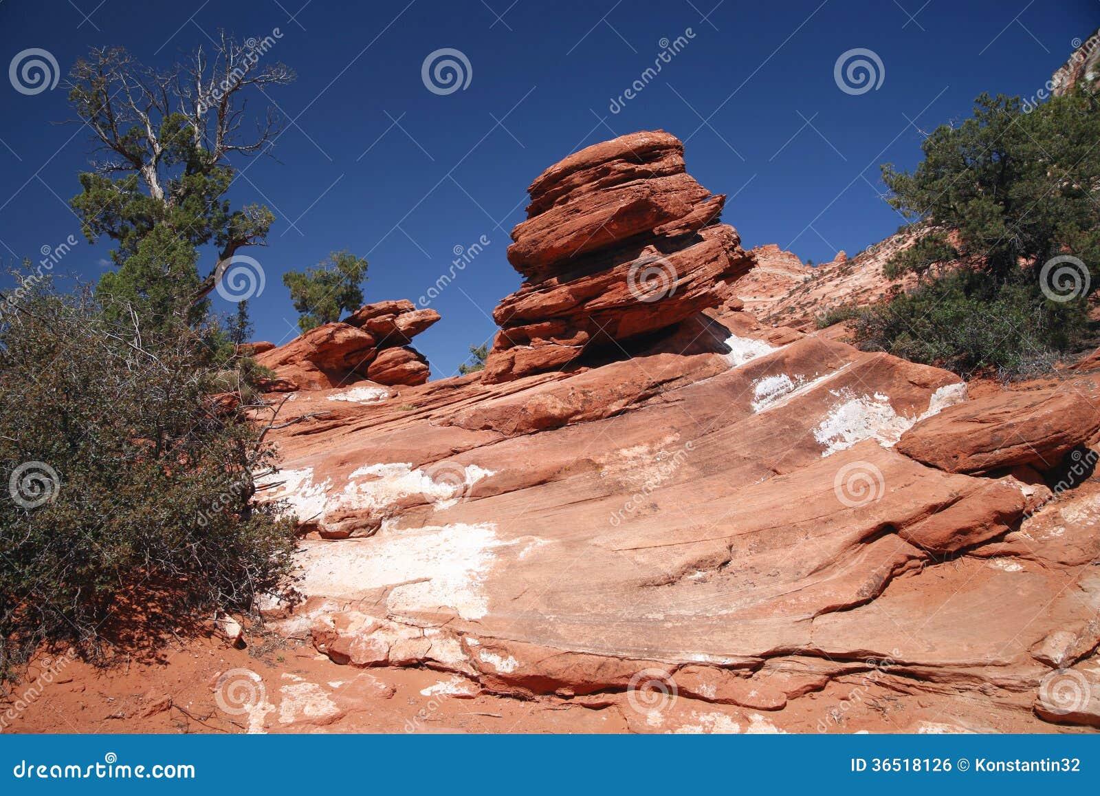 Skała w Zion parku narodowym, Utah, usa