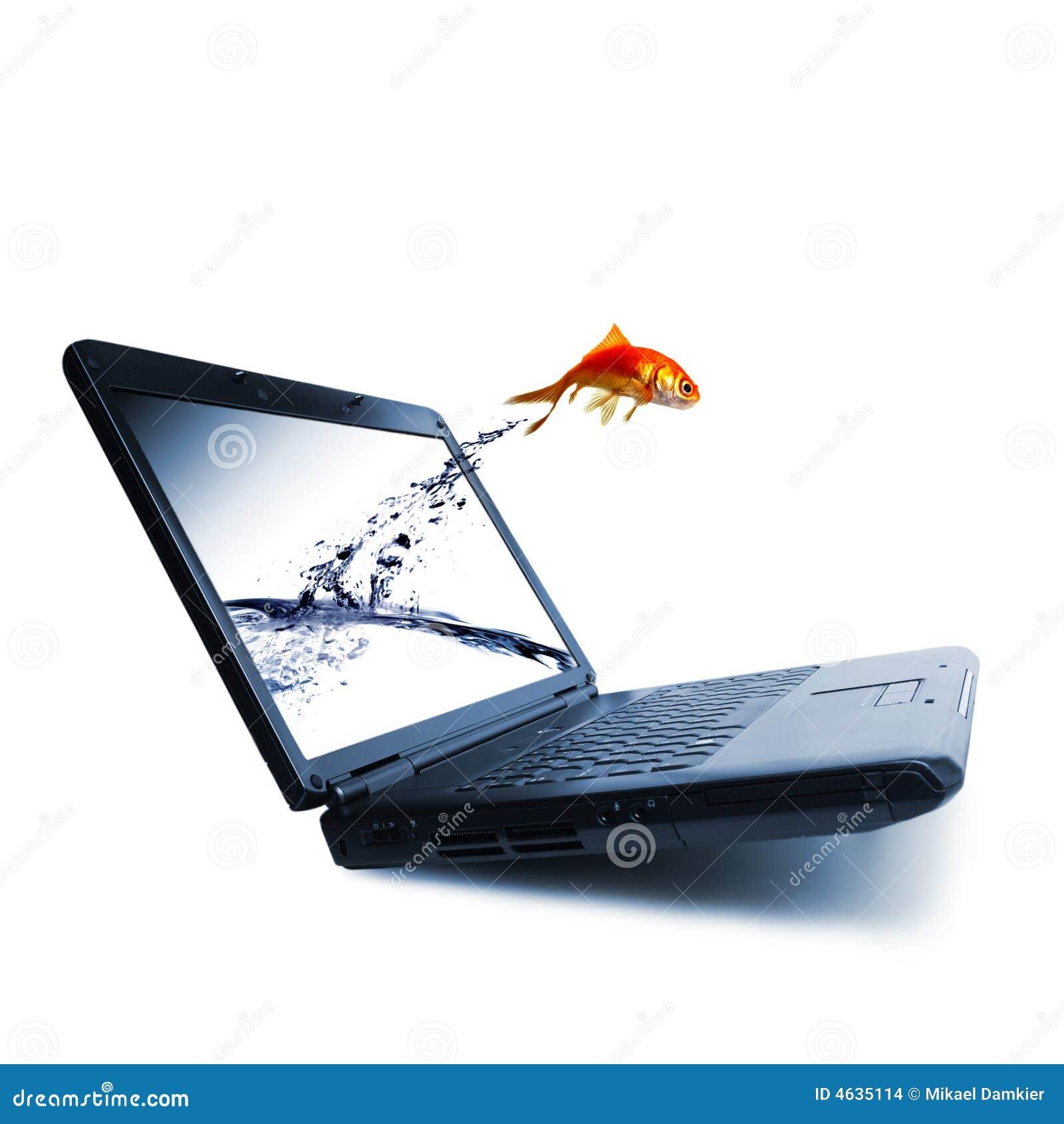 Skacz złotą rybkę
