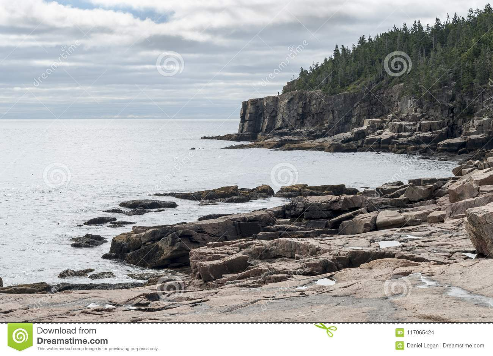 Skalista linia brzegowa blisko Wydrowej falezy w Acadia parku narodowym