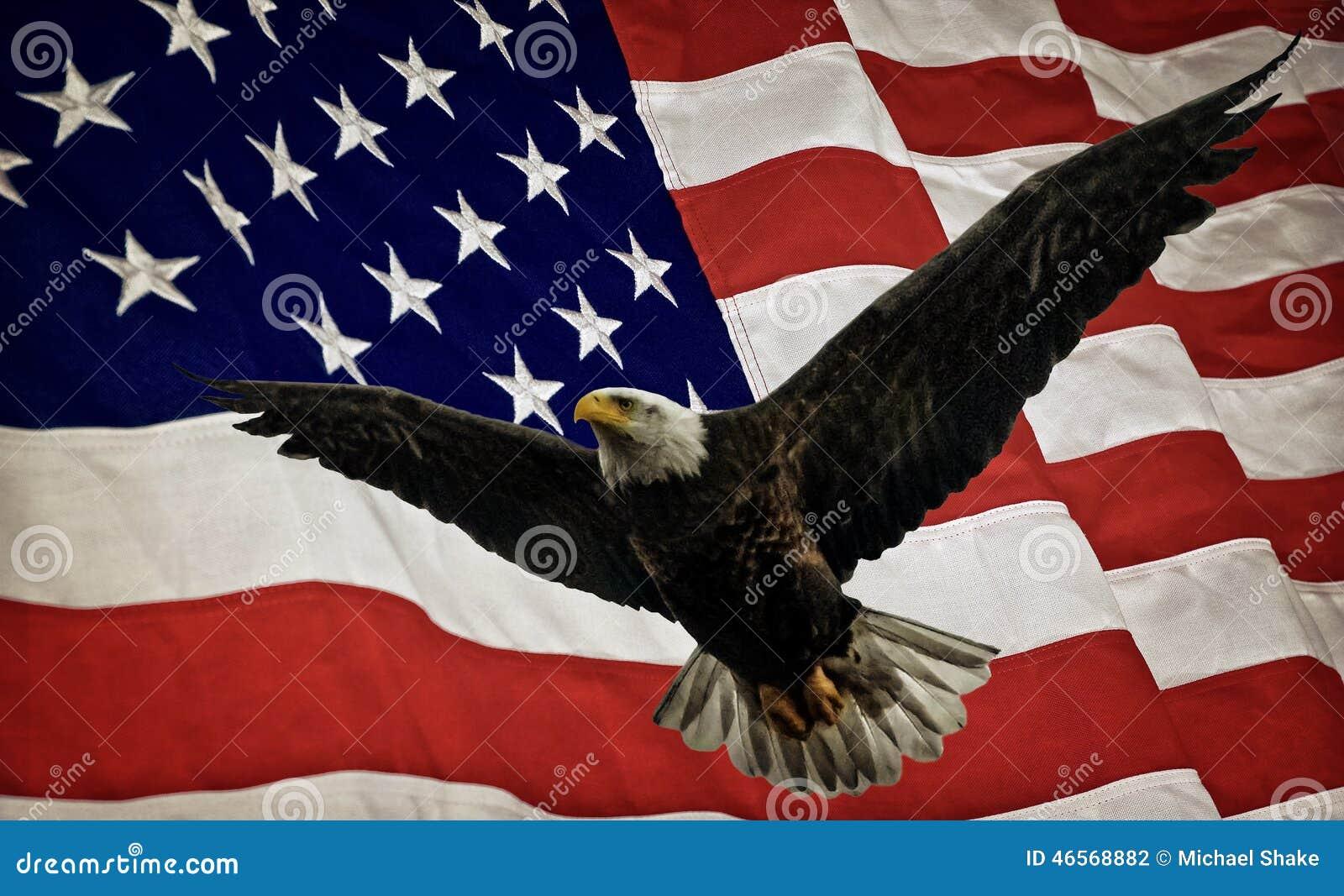 Skallig örnflagga