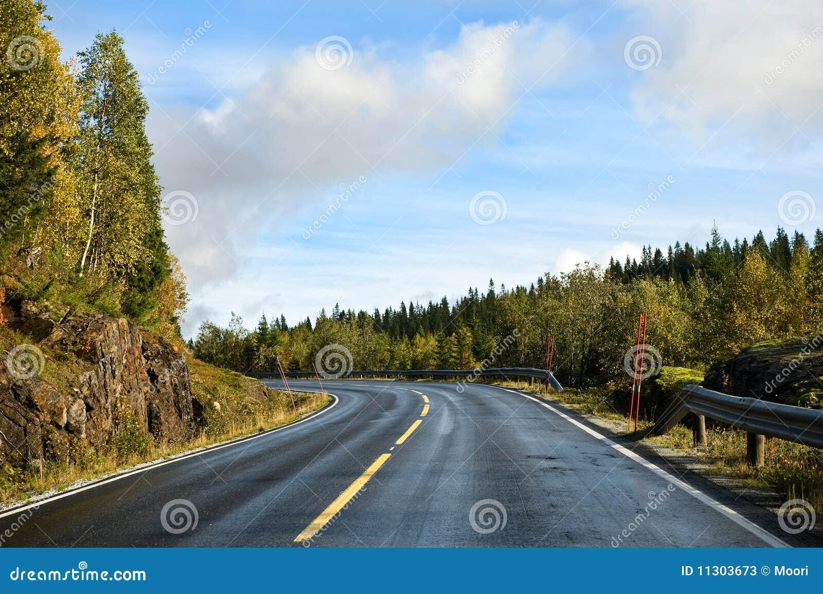 Skandinavische Straße
