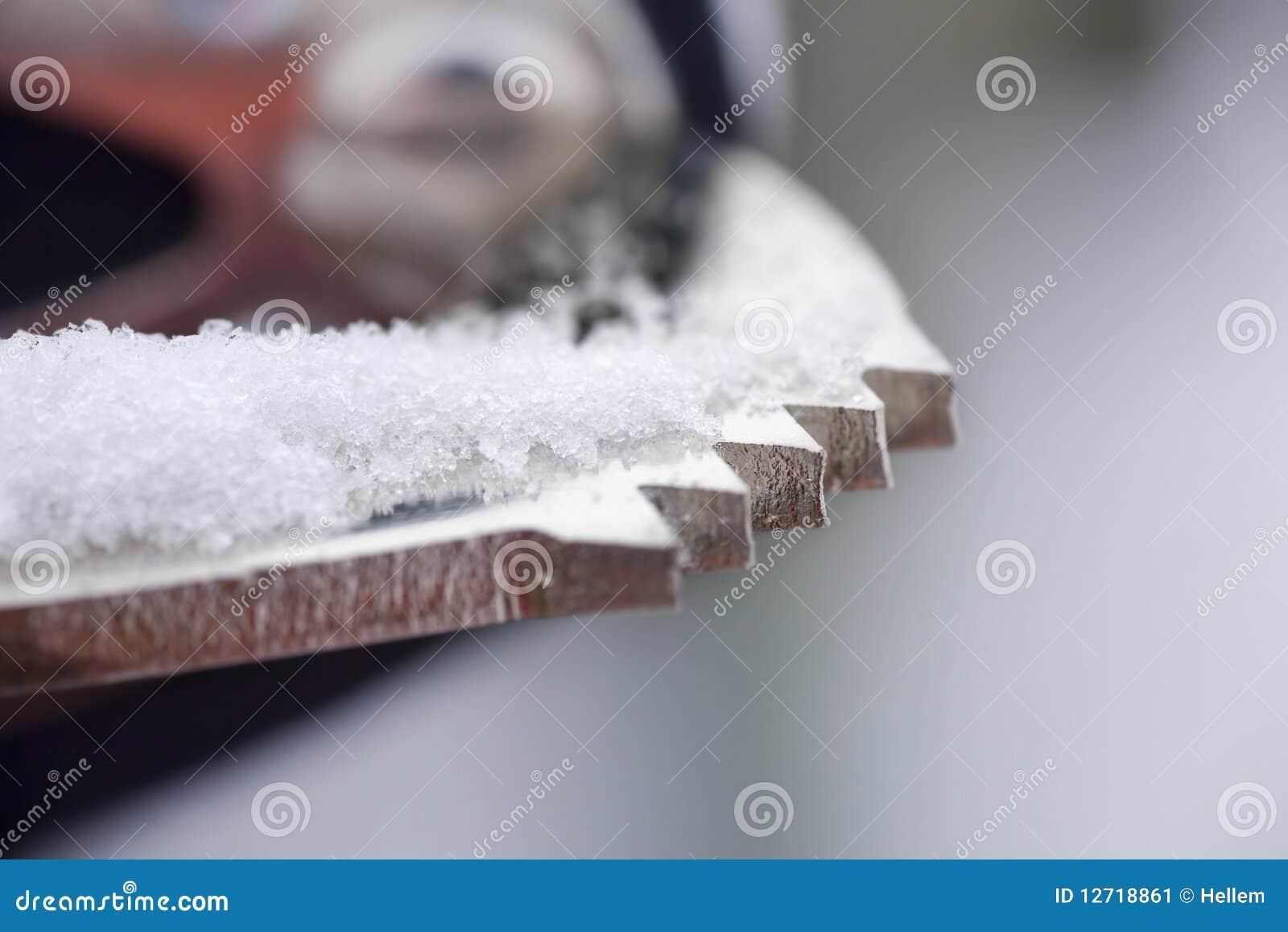Skate Detail