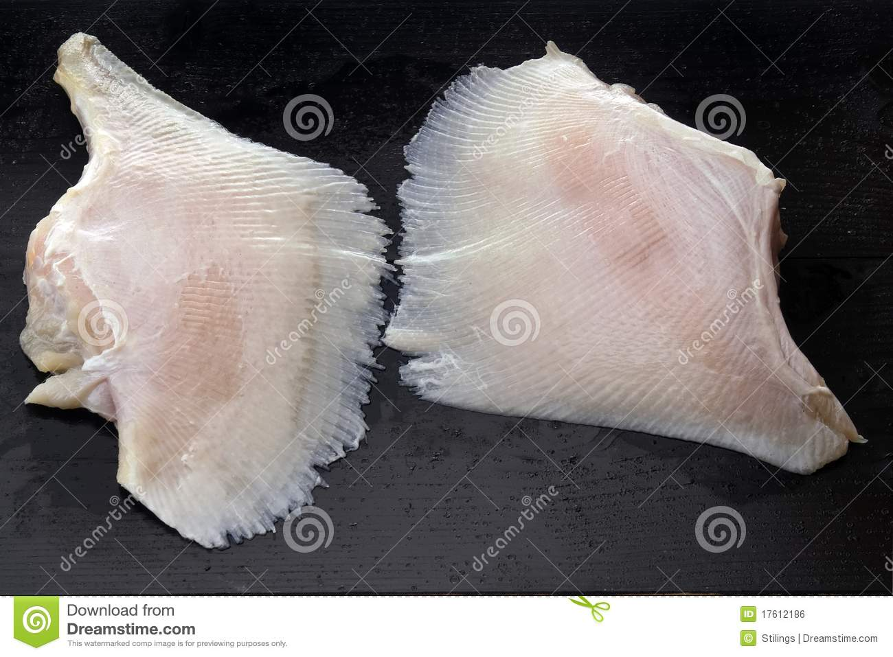 Skate wings royalty free stock image image 17612186 for Wings fish