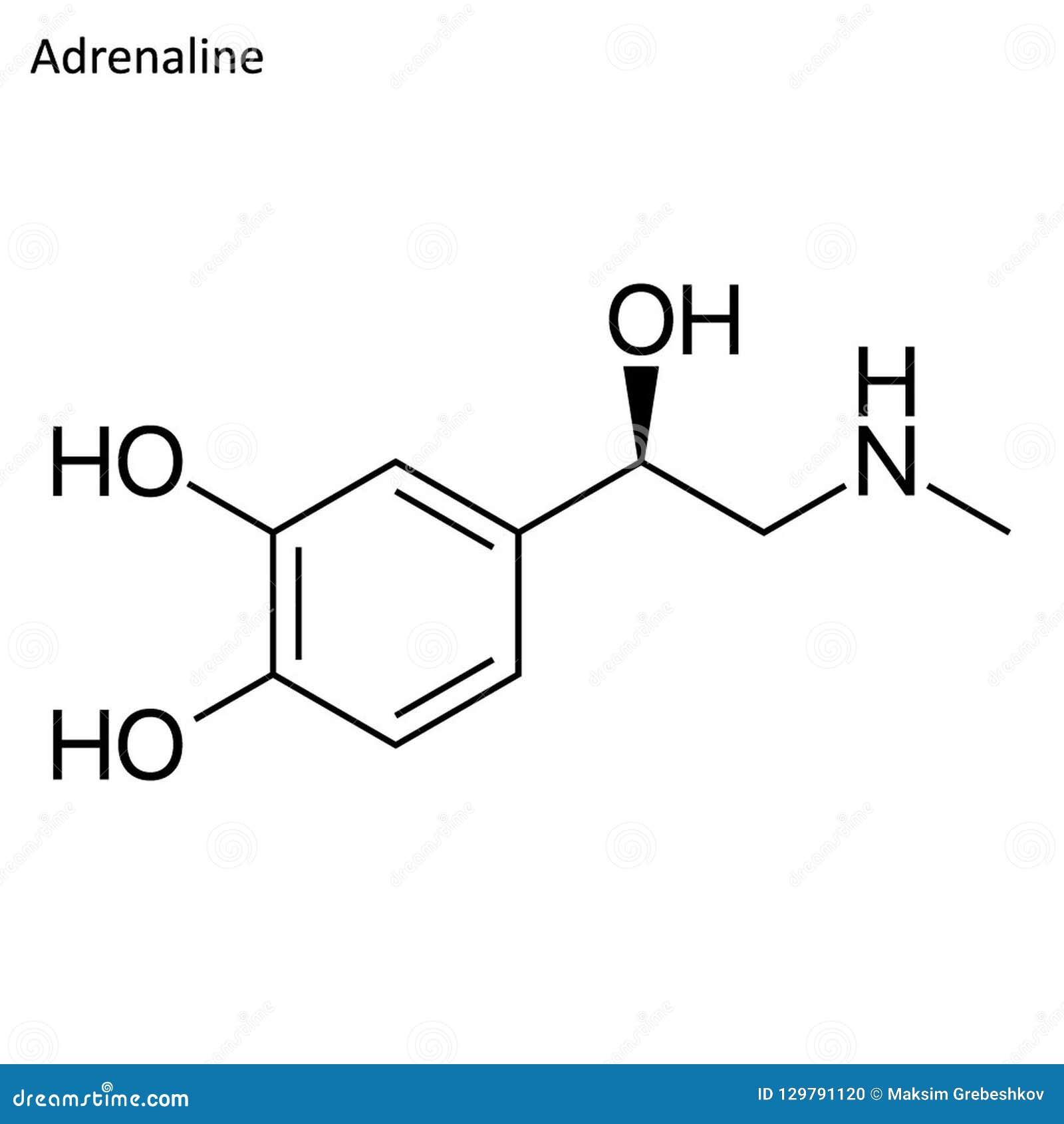 Skeletal Formula Of Adrenaline Stock Illustration