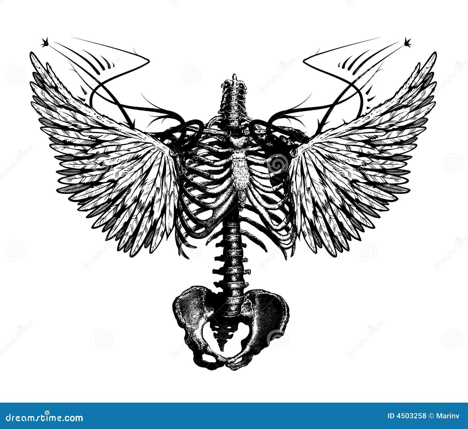 Skeleton angel stock illustration. Image of bare, skelet