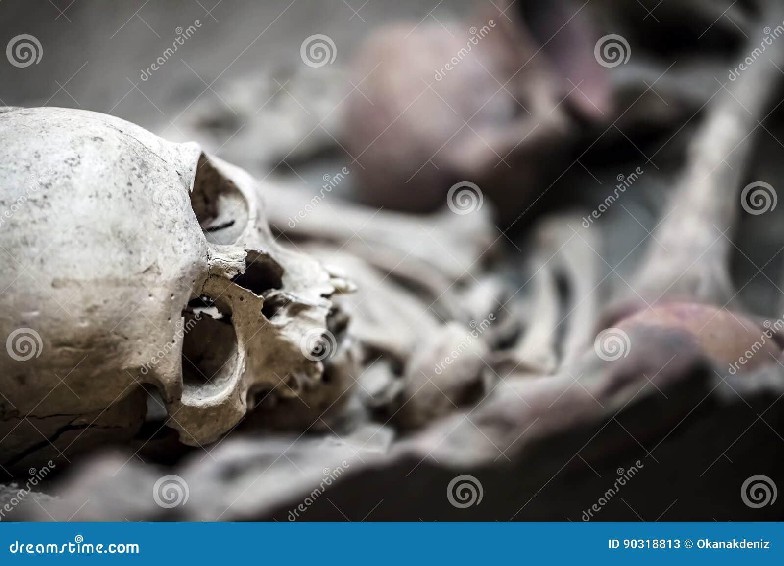 Skeleton Dead Body Head stock image. Image of crime, anatomy - 90318813