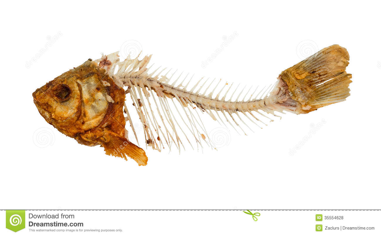 spine map with Royalty Free Stock Photos Skeleton Fish Symbol Food Shortage Misery Isolated White Background Image35554628 on Icachoice as well Blenheim furthermore Royalty Free Stock Photos Skeleton Fish Symbol Food Shortage Misery Isolated White Background Image35554628 further Crane Thomas London Town likewise 8156953025.