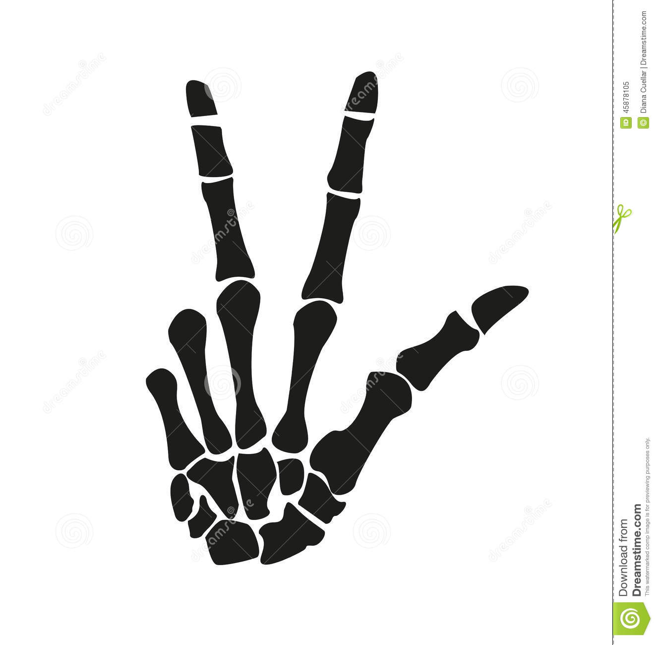 Skeleton hand stock vector. Illustration of anatomy, bones - 45878105