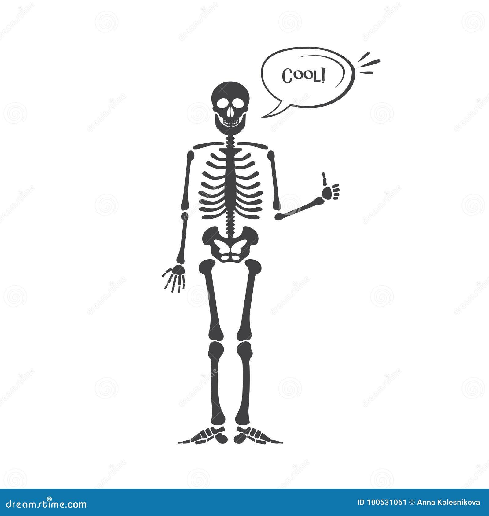 Skeleton human anatomy. Vector halloween black skeleton isolated on white. Skeleton  hand sign: