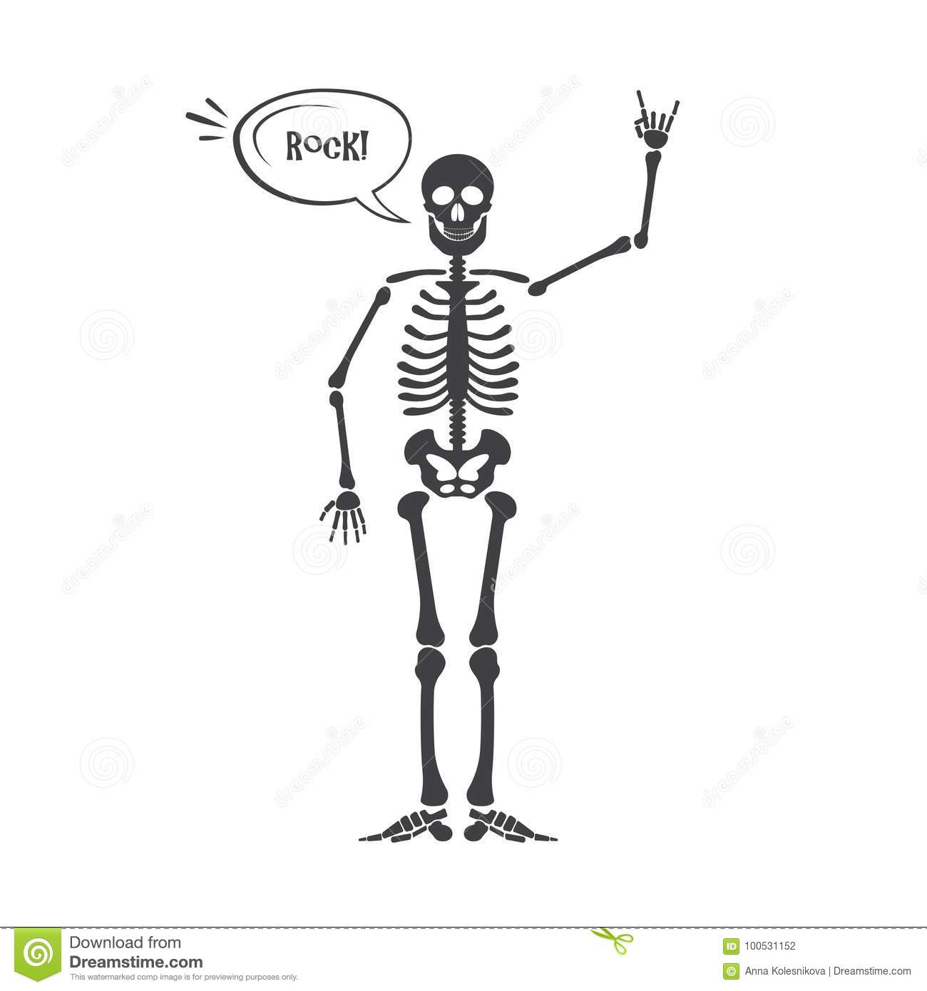 Skeleton Human Anatomy Vector Halloween Black Skeleton Isolated On