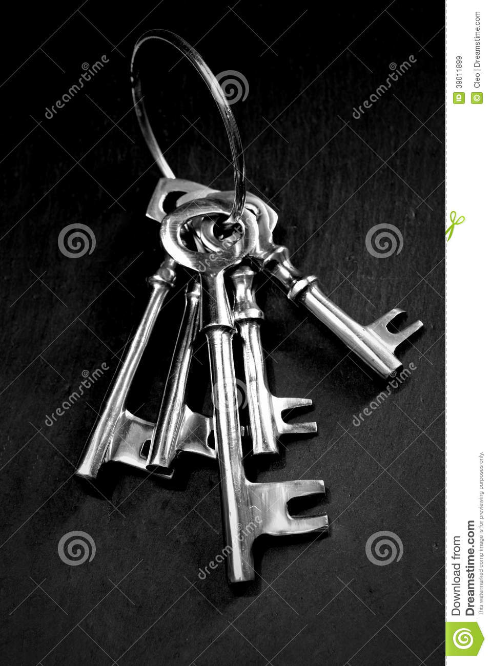 Skeleton Keys Stock Image Image Of Open Mysterious