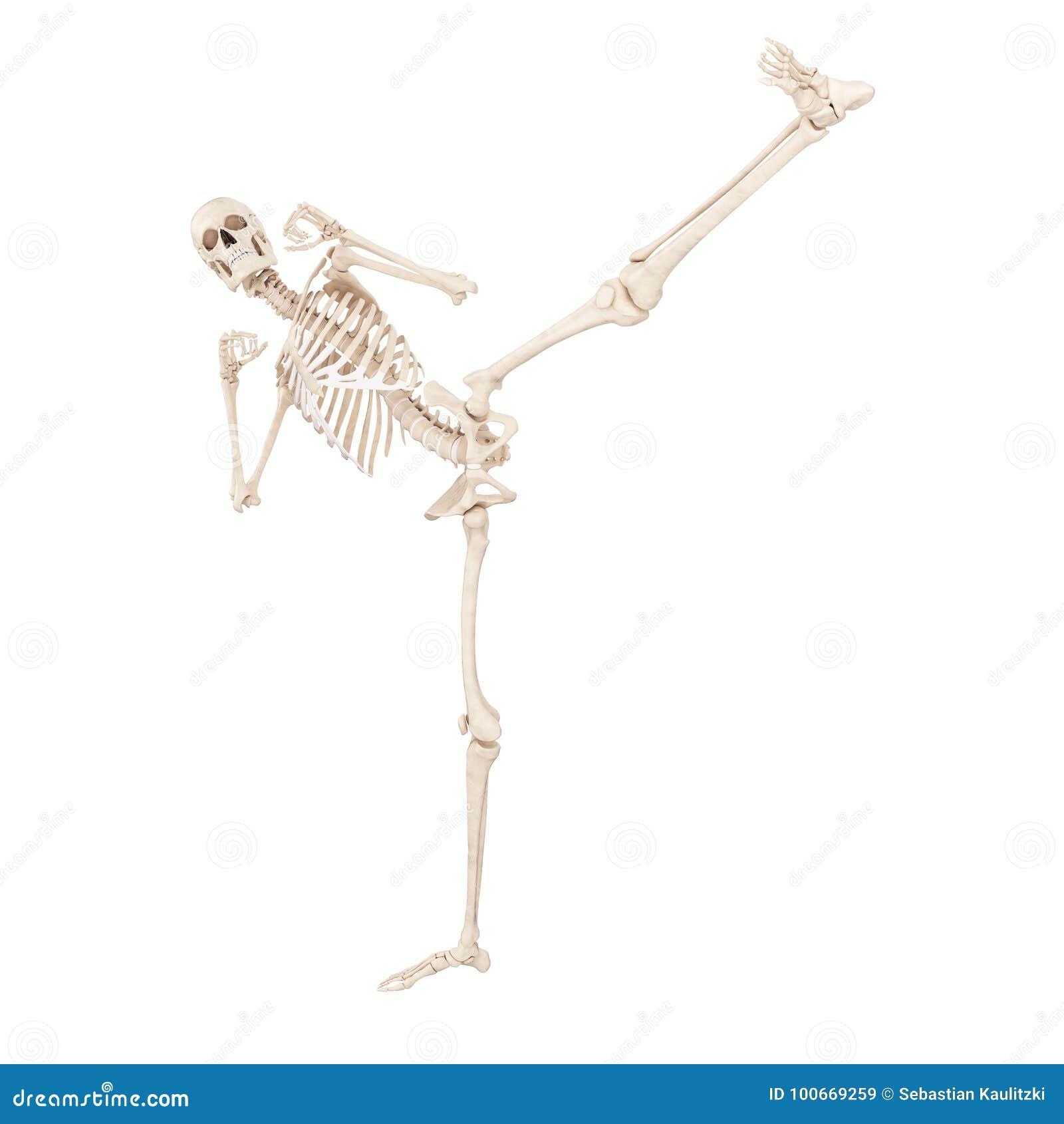 A Skeleton Kicking Stock Illustration Illustration Of Bones 100669259