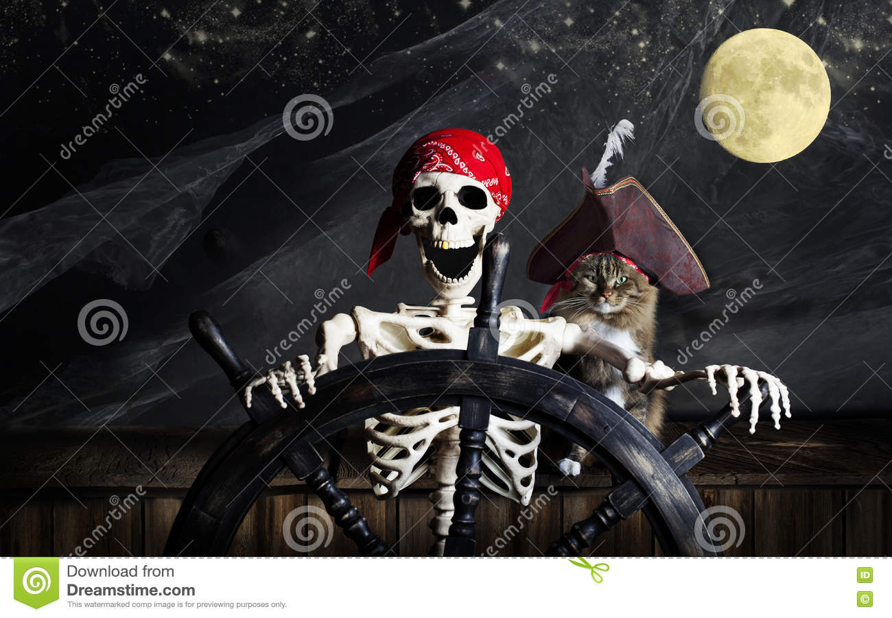Download Skeleton Pirate and Cat stock photo. Image of marilyn - 70713064