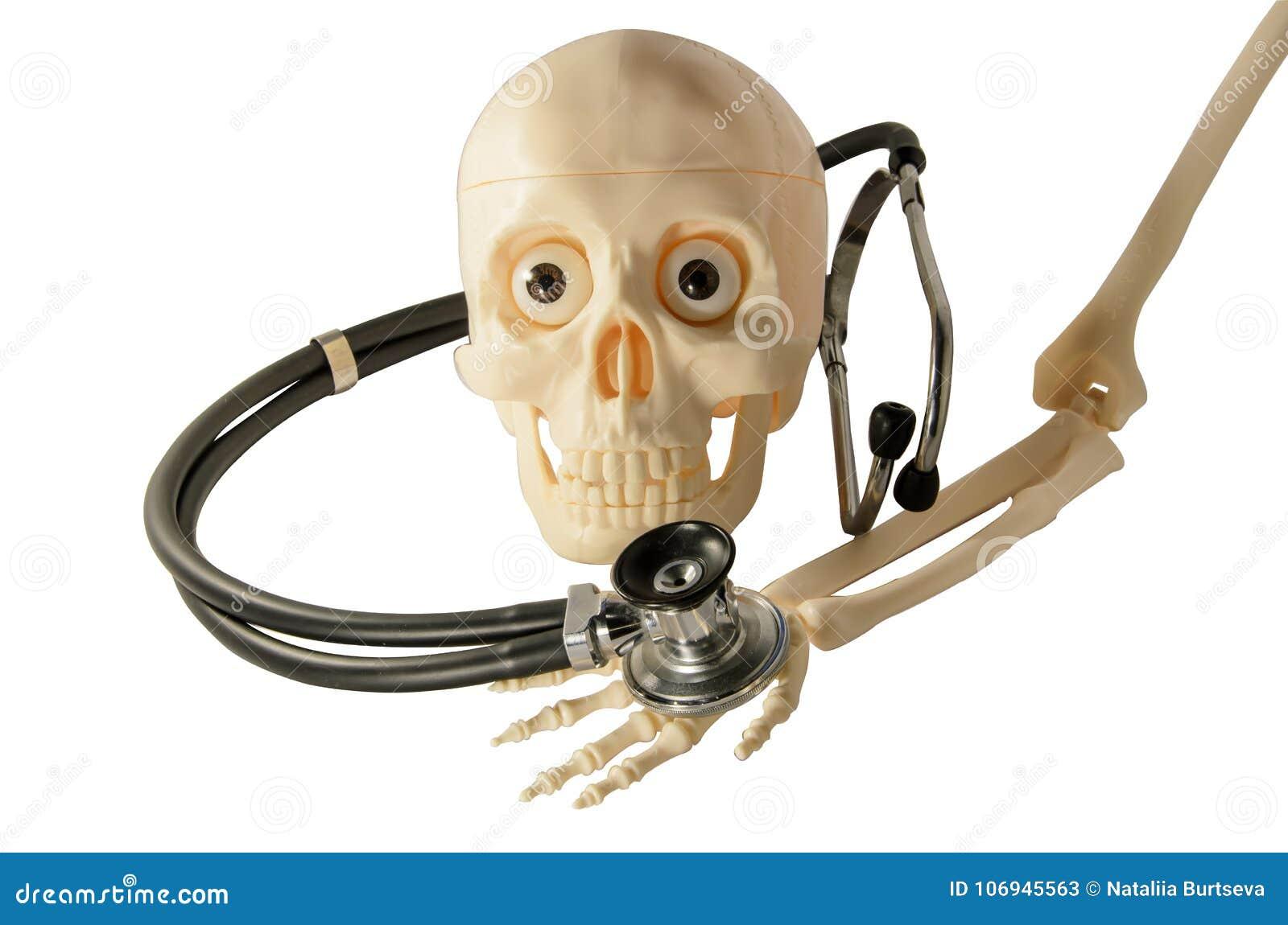 Skeleton skull arm bones stethoscope