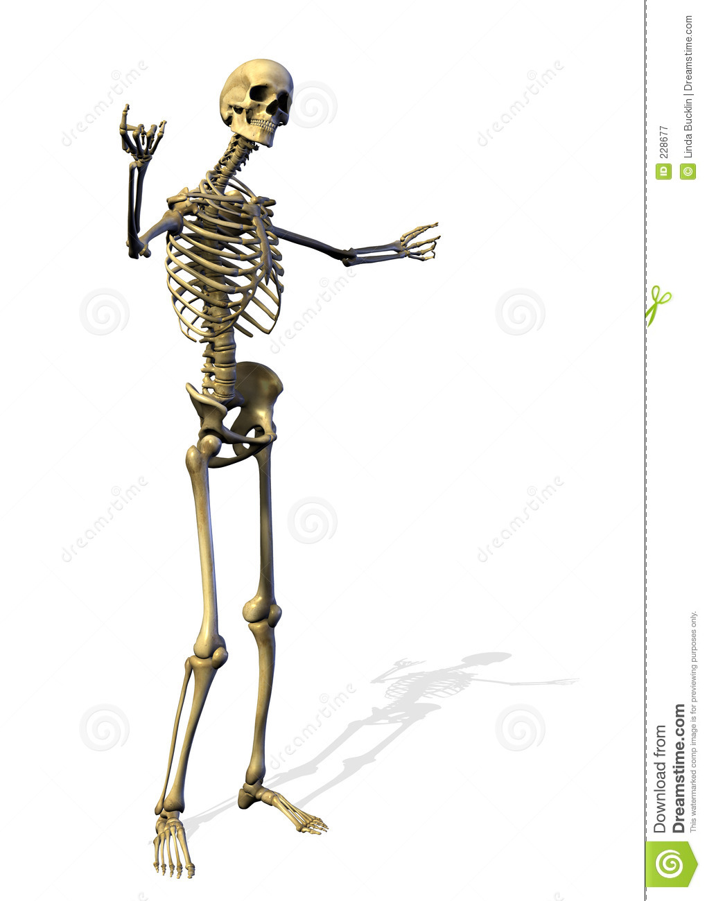 Skeleton - Welcome Gesture - includes clipping path