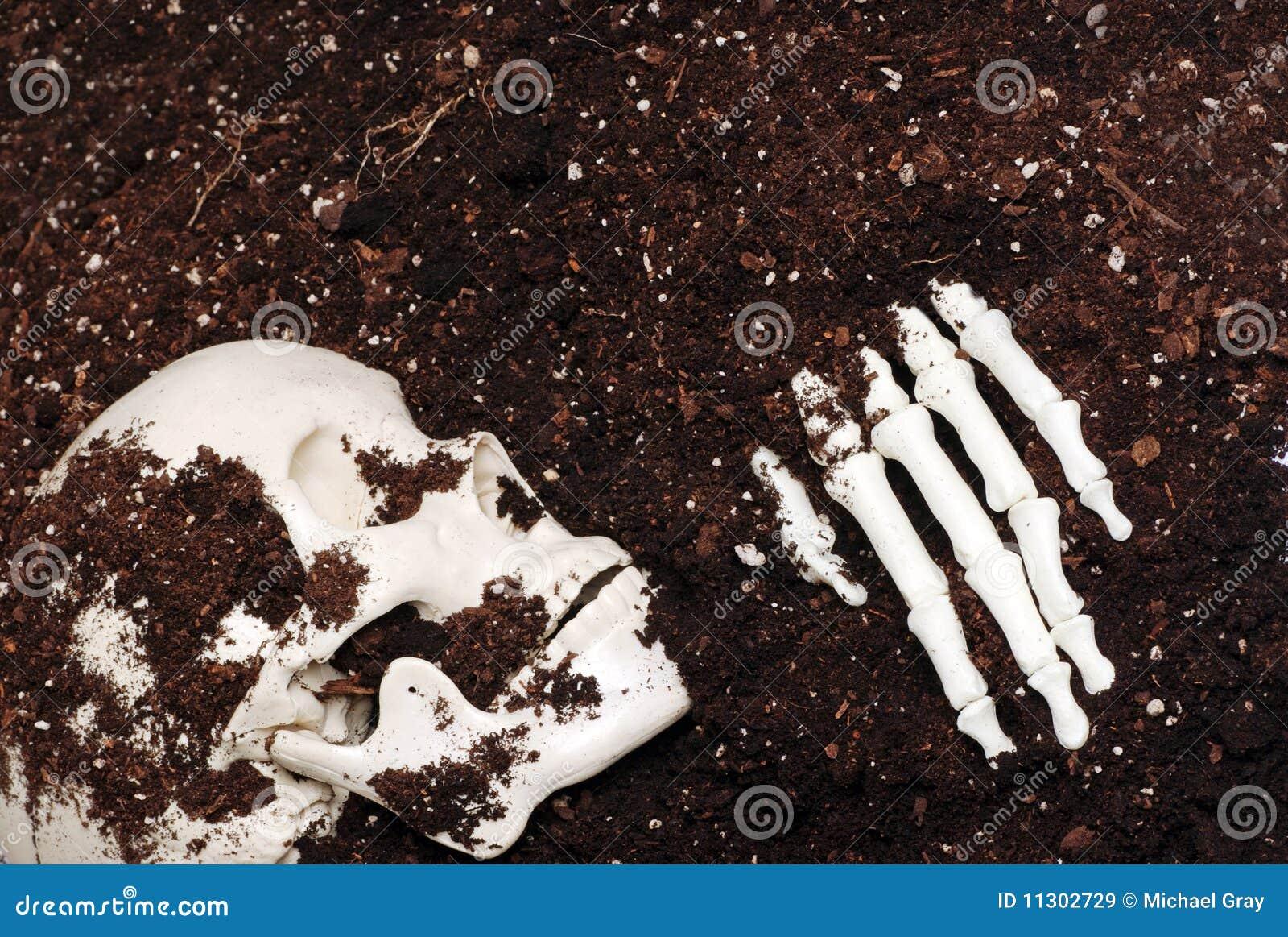 Skelett im Schmutz