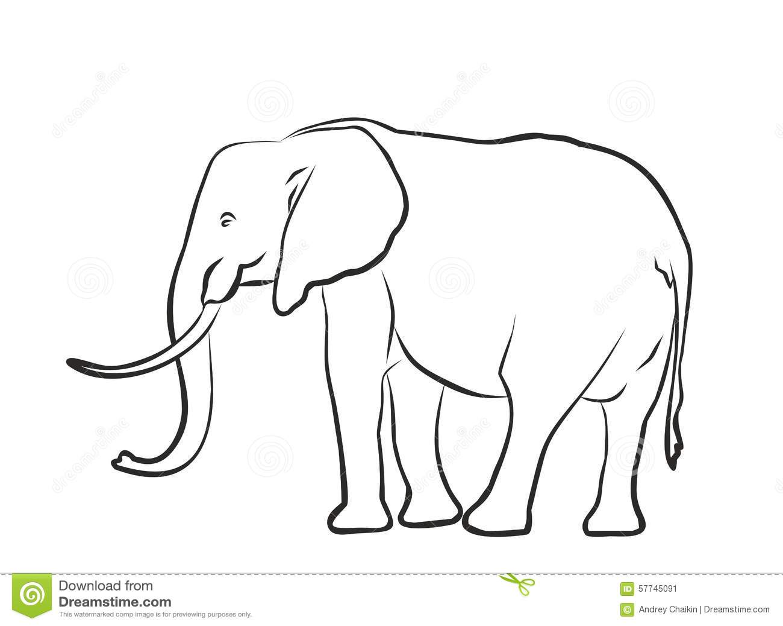 sketch of a big elephant stock vector image 57745091