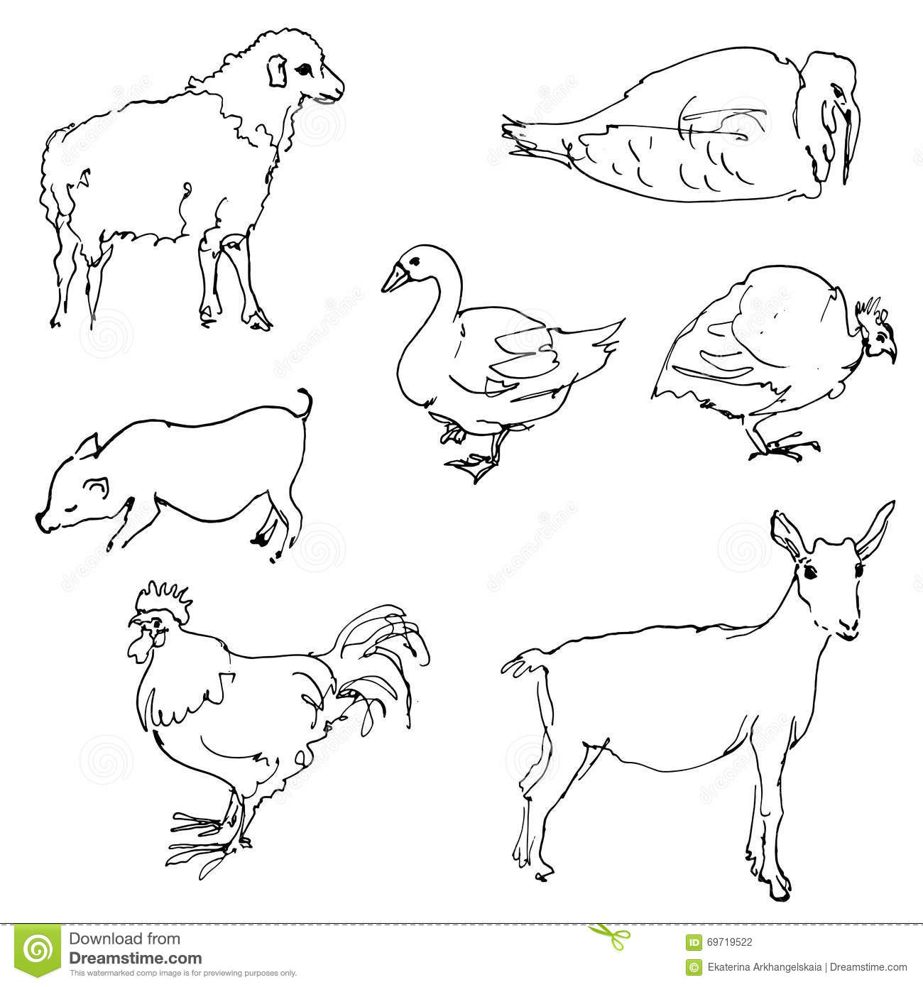 Line Art Farm Animals : Sketch of farm animals vector illustration cartoondealer