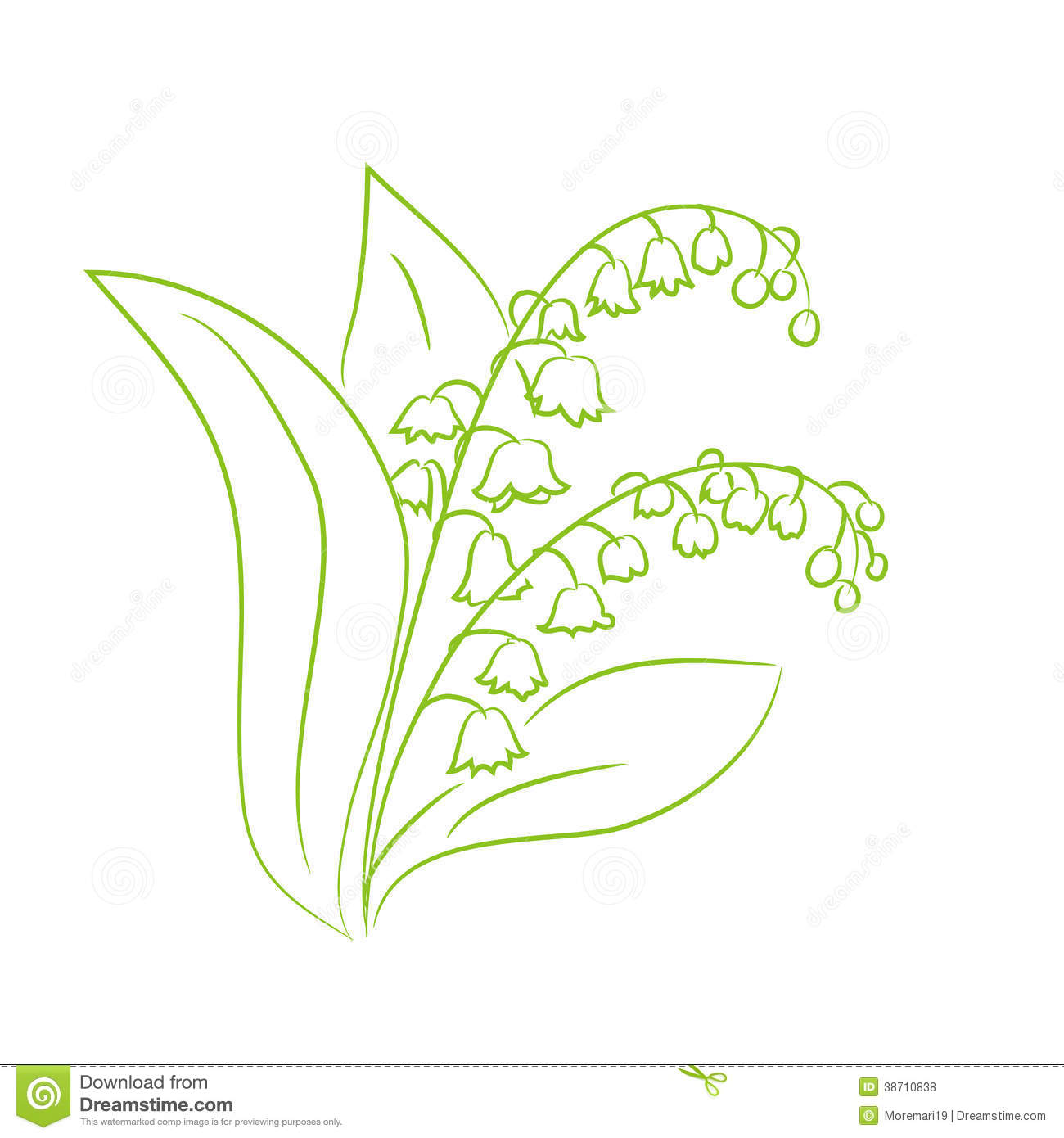 Sketch of a flower lily of the valley stock vector illustration of sketch of a flower lily of the valley izmirmasajfo