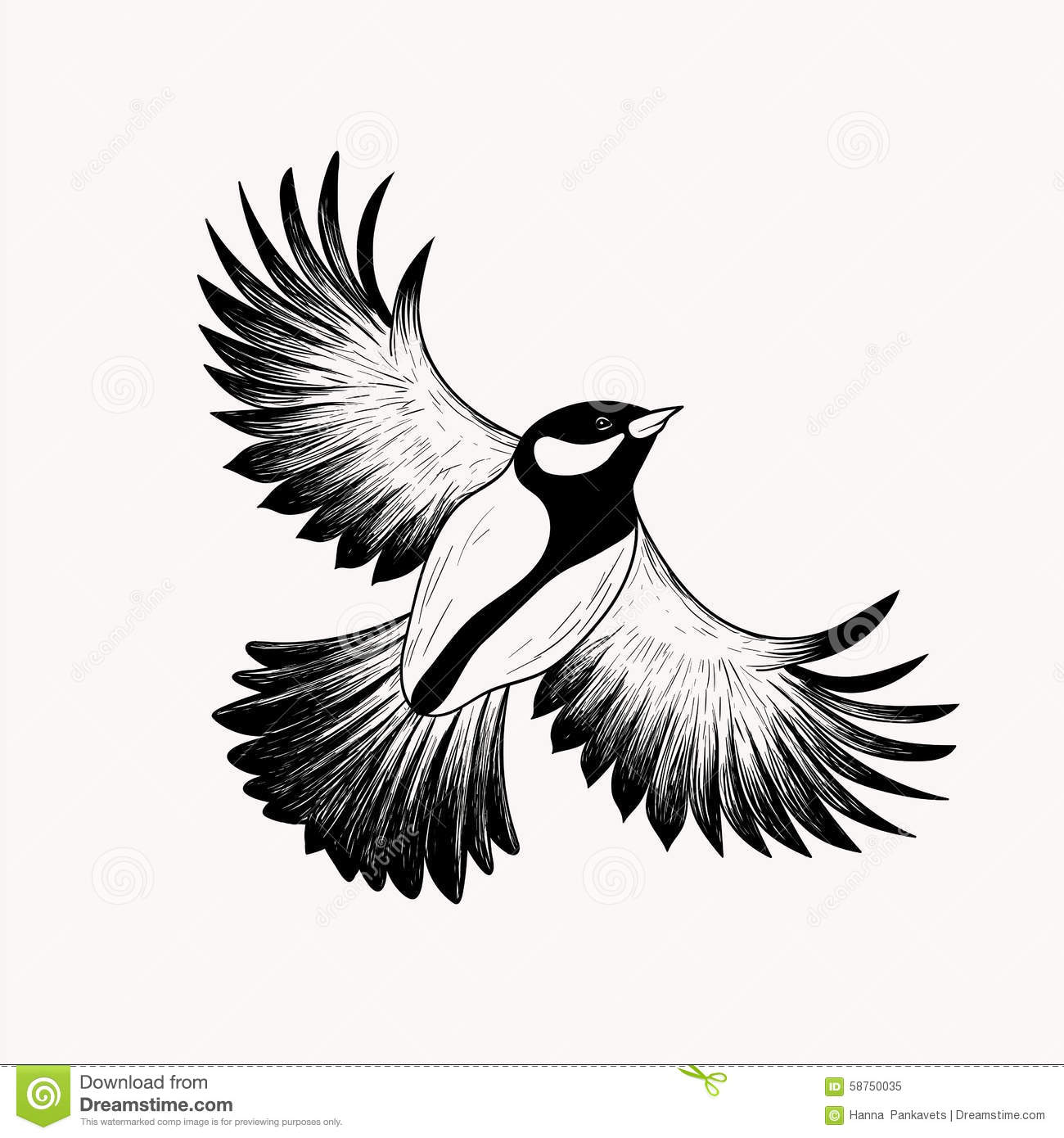 cartoon birds stock images royalty free images amp vectors