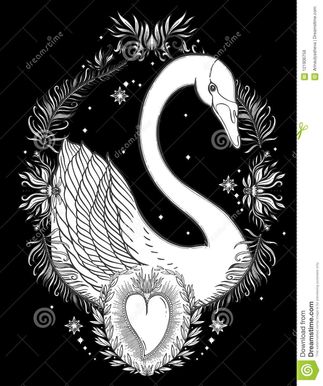 Sketch Graphic Illustration Beautiful Swan Sun Fairytale Character