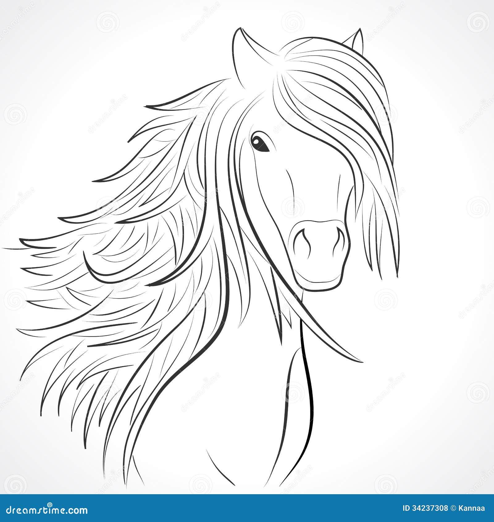 Eenhoorn Hoofd Kleurplaat Sketch Of Horse Head With Mane On White Vector Stock