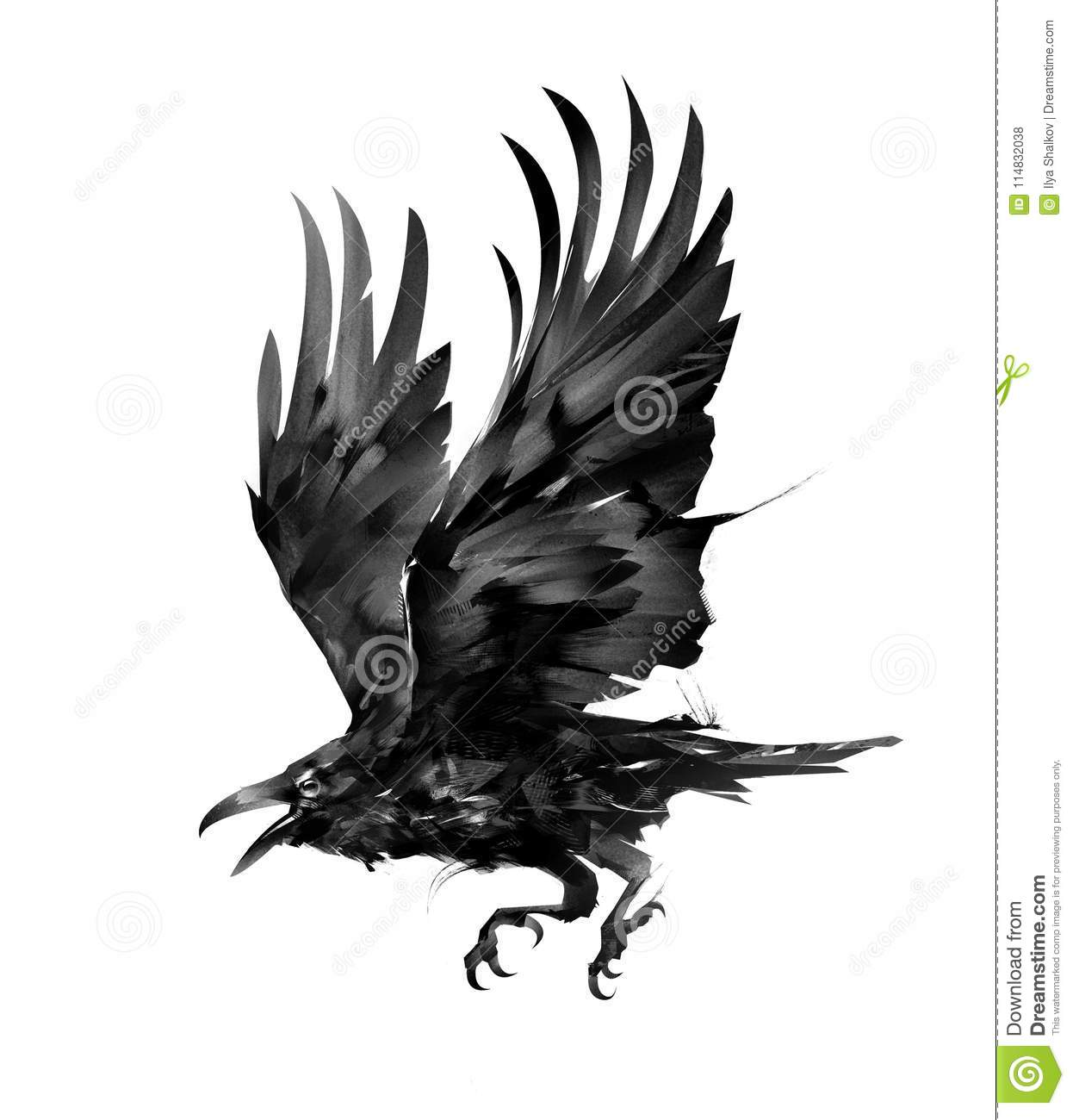 Painted isolated flying bird rook on the side