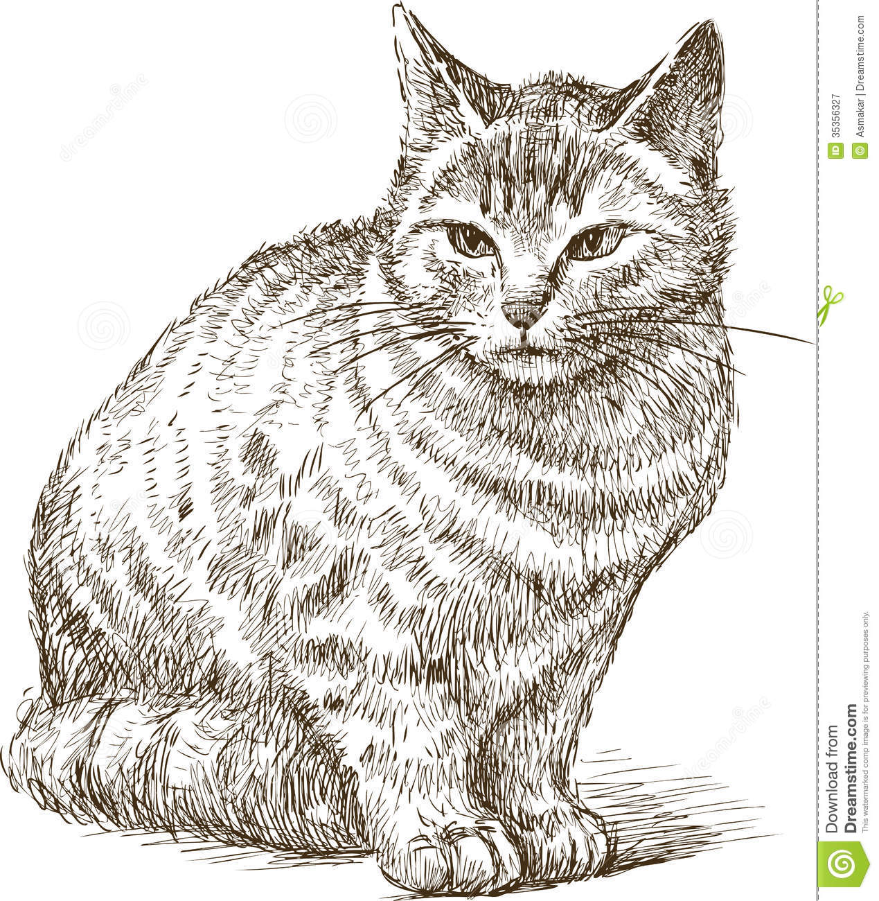 how to draw a cat side on in sketches