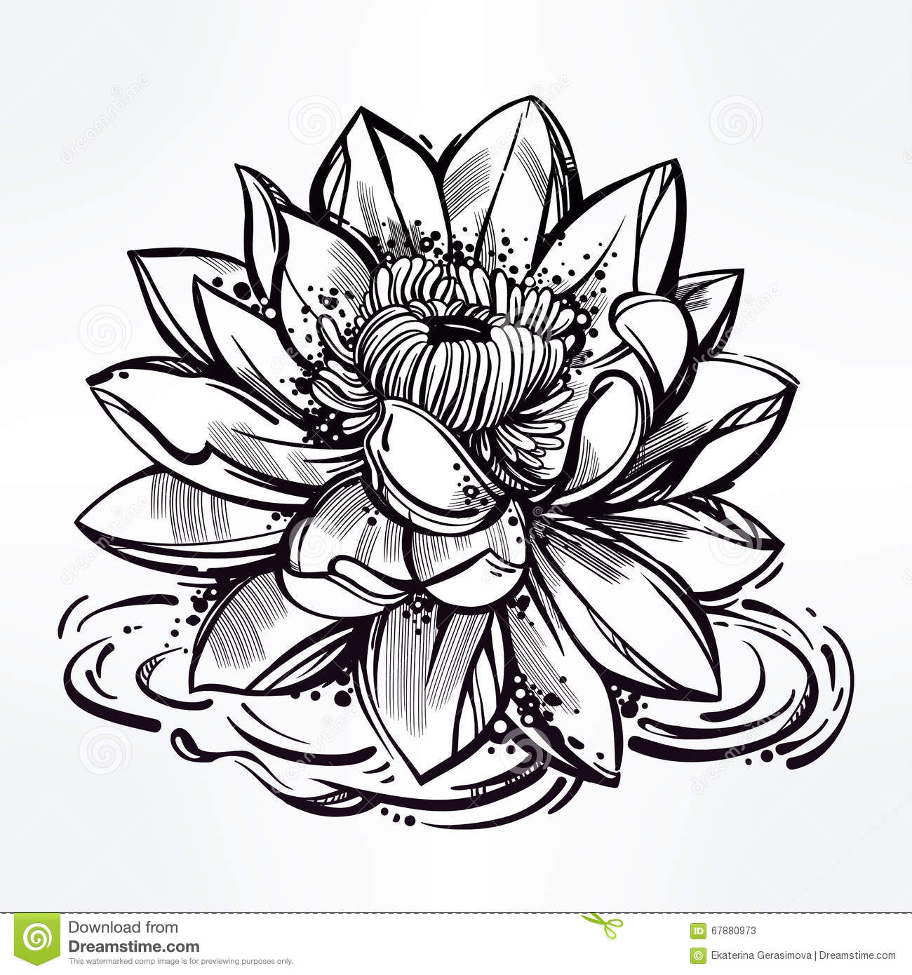 Line Art Media Design : Sketch of lily lotus flower in linear style stock vector