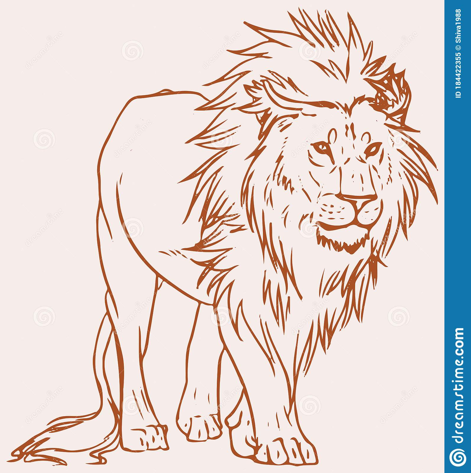 Sketch Of Male Lion Standing Outline Editable Vector Illustration Stock Vector Illustration Of Danger Horoscope 184422355 Choose from over a million free vectors, clipart graphics, vector art images, design templates, and illustrations created by artists worldwide! dreamstime com