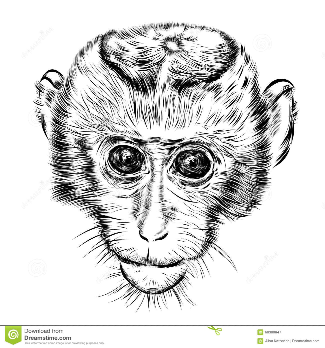 Line Drawing Monkey Face : Sketch monkey face hand drawn doodle vector stock