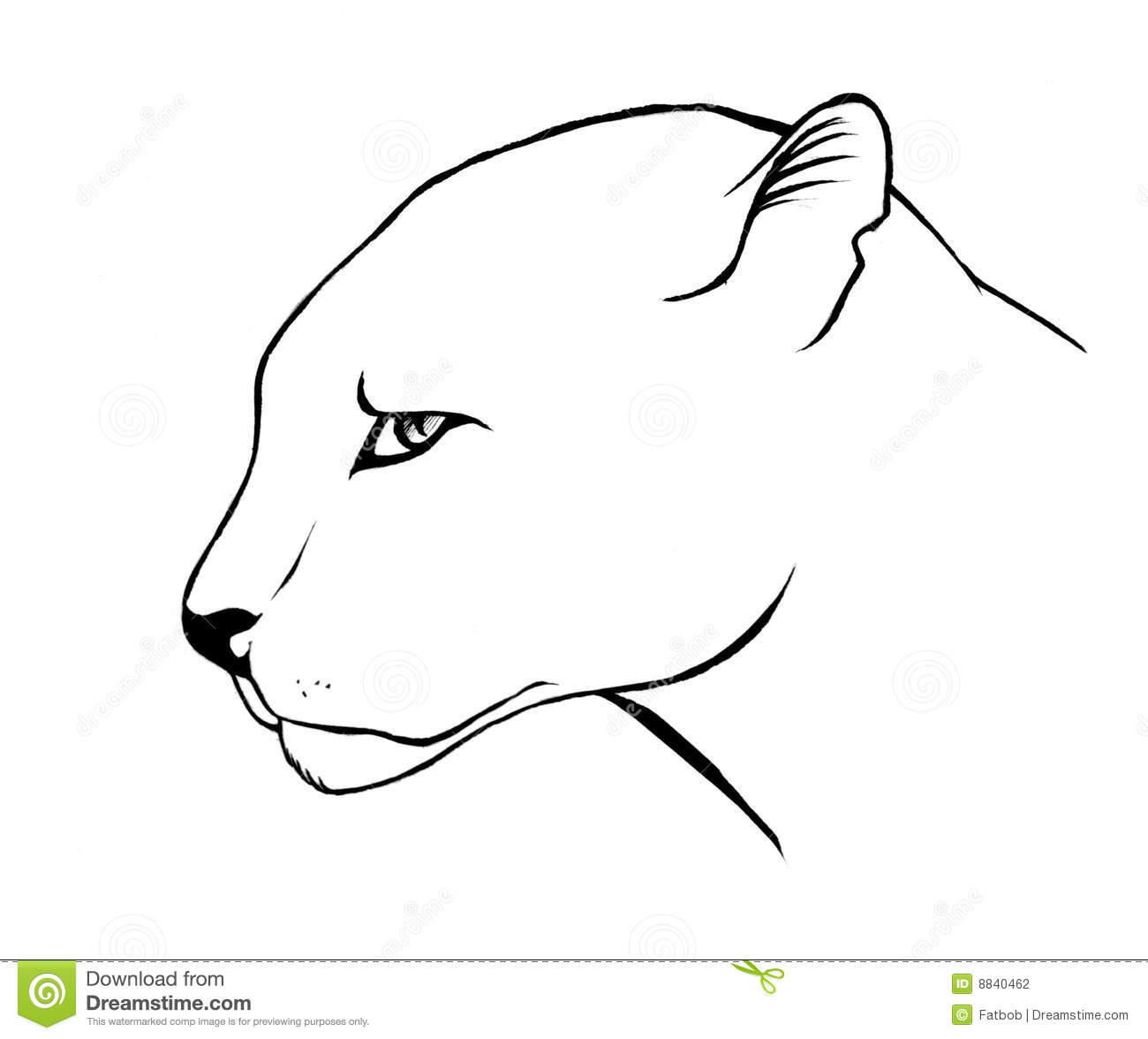 panther drawing outline - photo #33