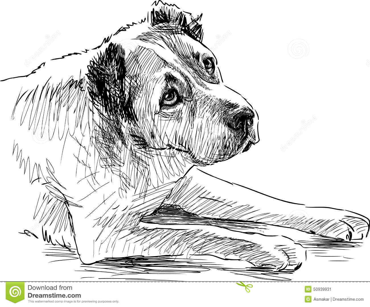 Sketch Of A Sad Dog Stock Vector. Image Of Vector Hand - 50939931