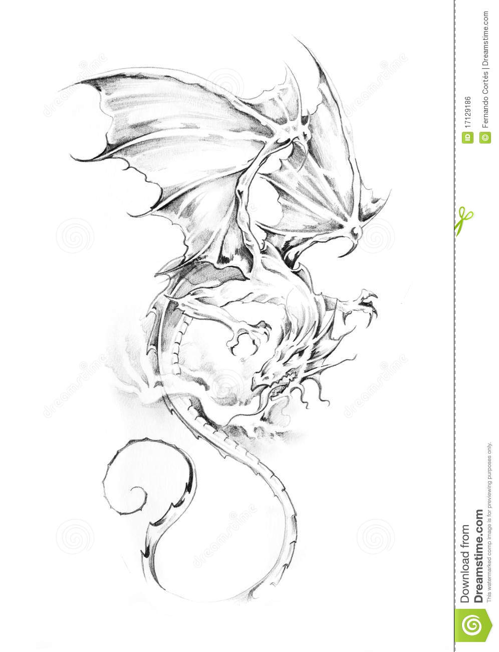 how to draw flying dragons