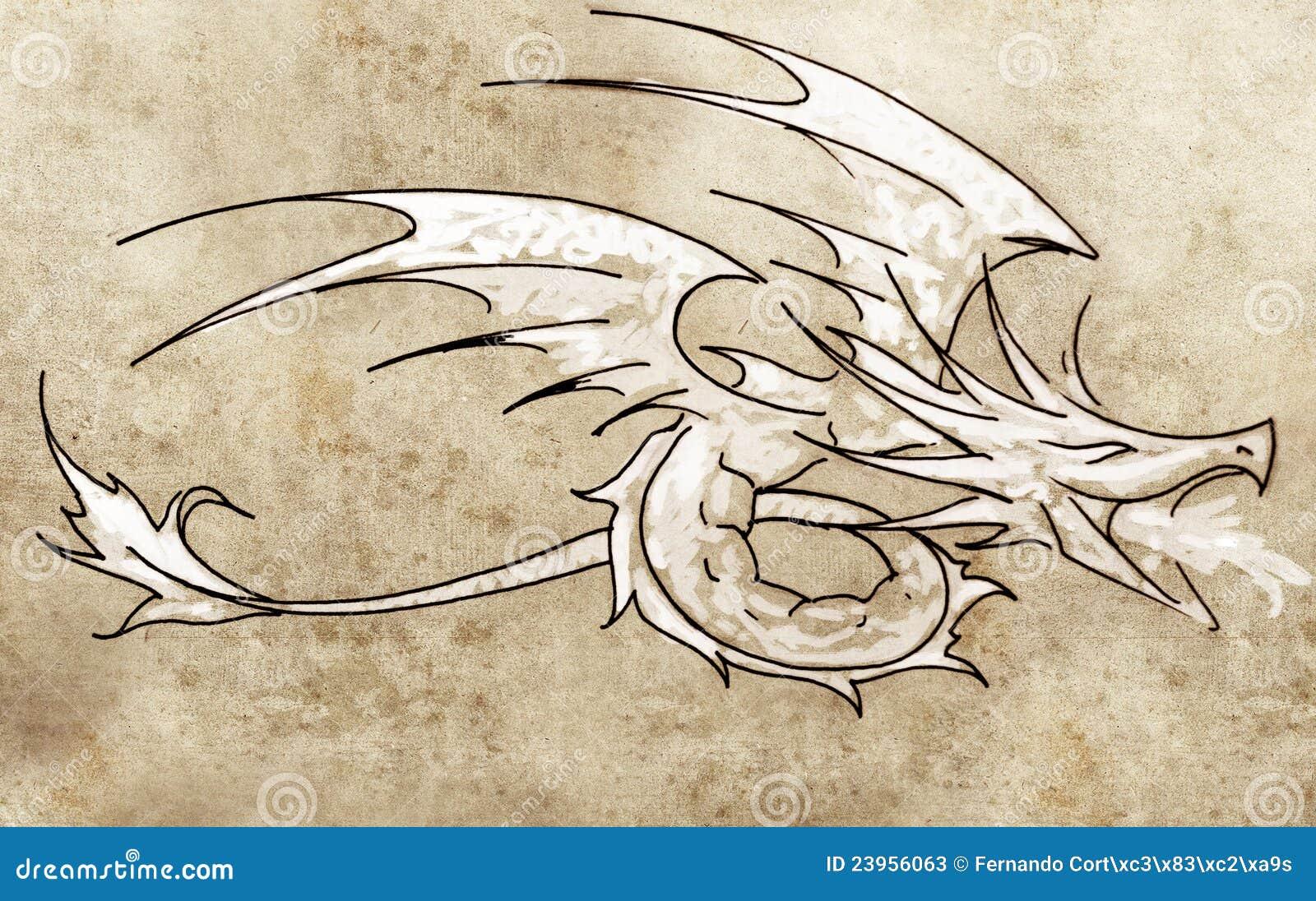 sketch of tattoo art dragon line drawing stock photos
