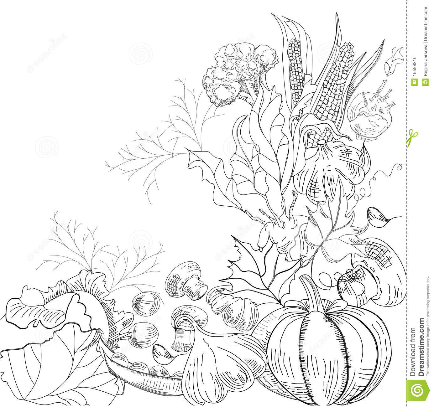 Vegetable garden sketch - Royalty Free Stock Photo Download Sketch With Vegetable