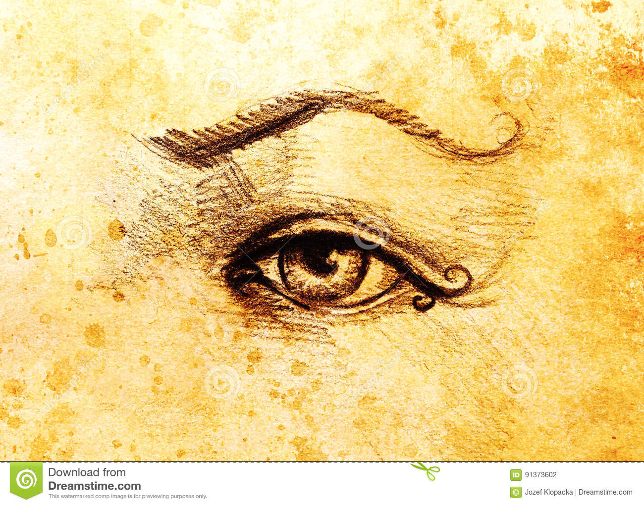 Sketch Of Woman Eye With Eyebrow Drawing On Abstract