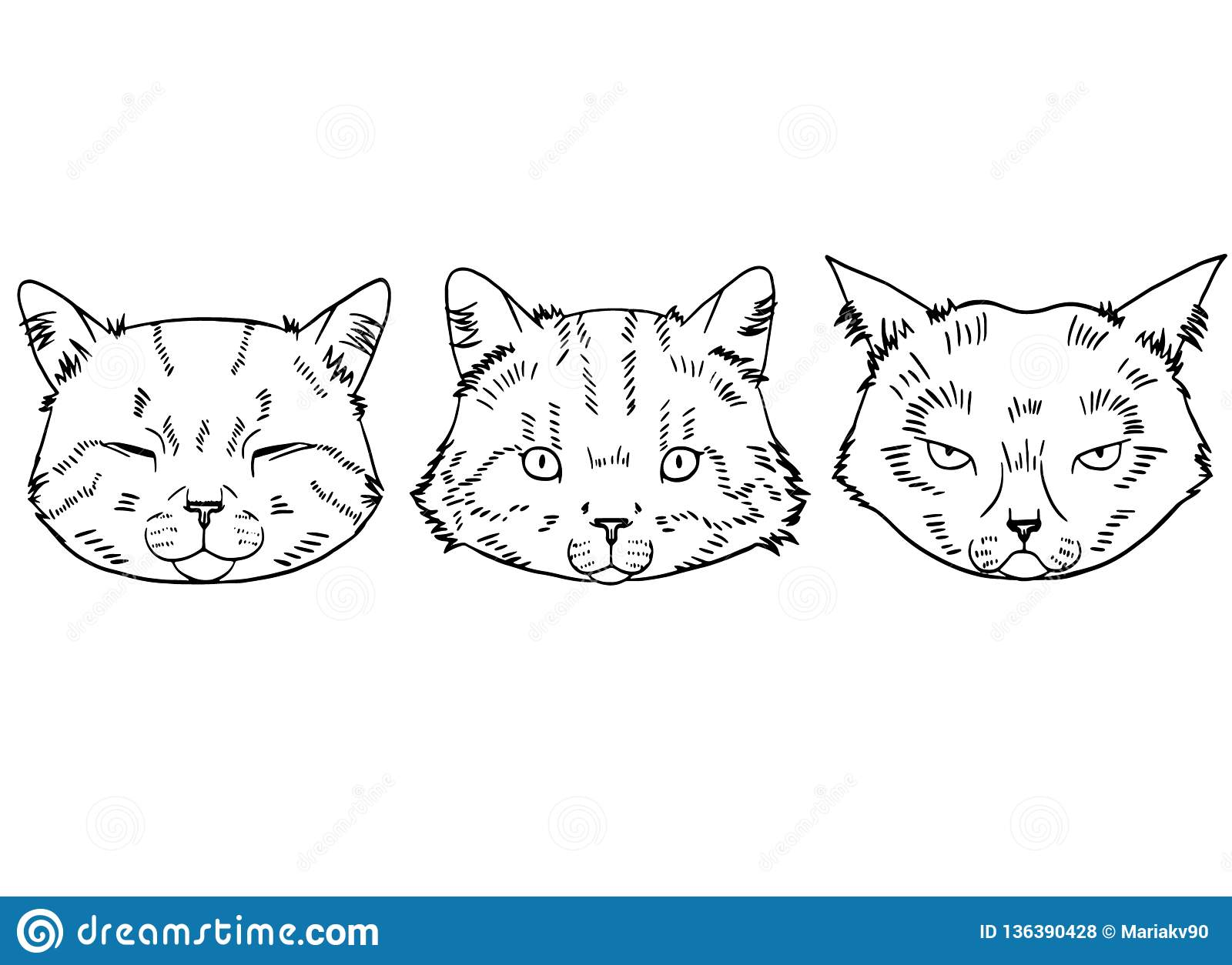 Sketches Of Cat Heads In Realistic Style Cats Set Vector