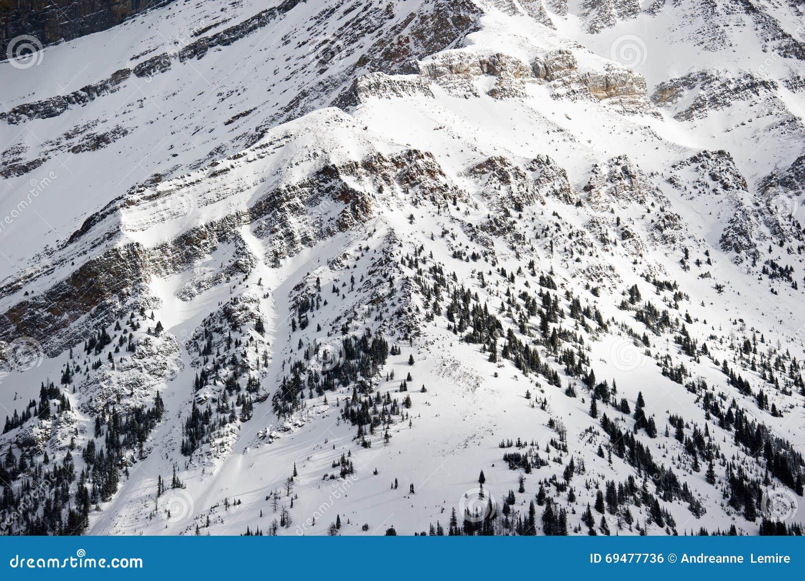 Ski de ressource de Lake Louise