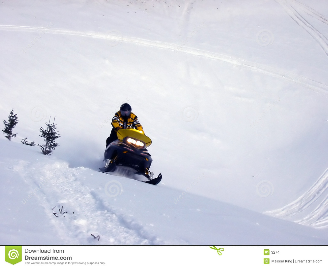 Ski-Doo In Snow