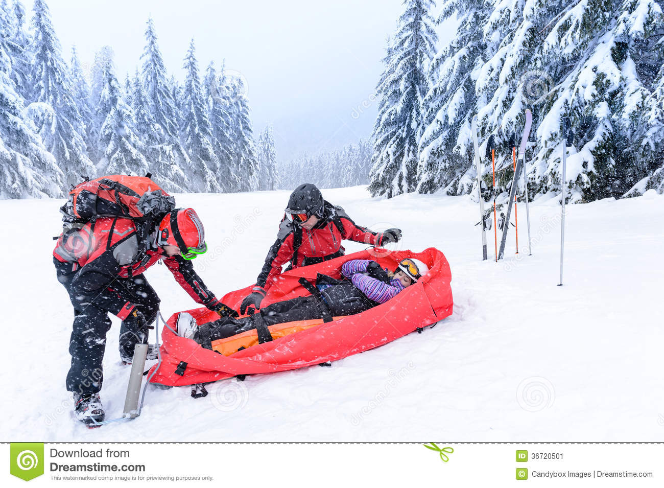 Ski Patrol With Rescue Sled Injured Woman Stock Image - Image ...