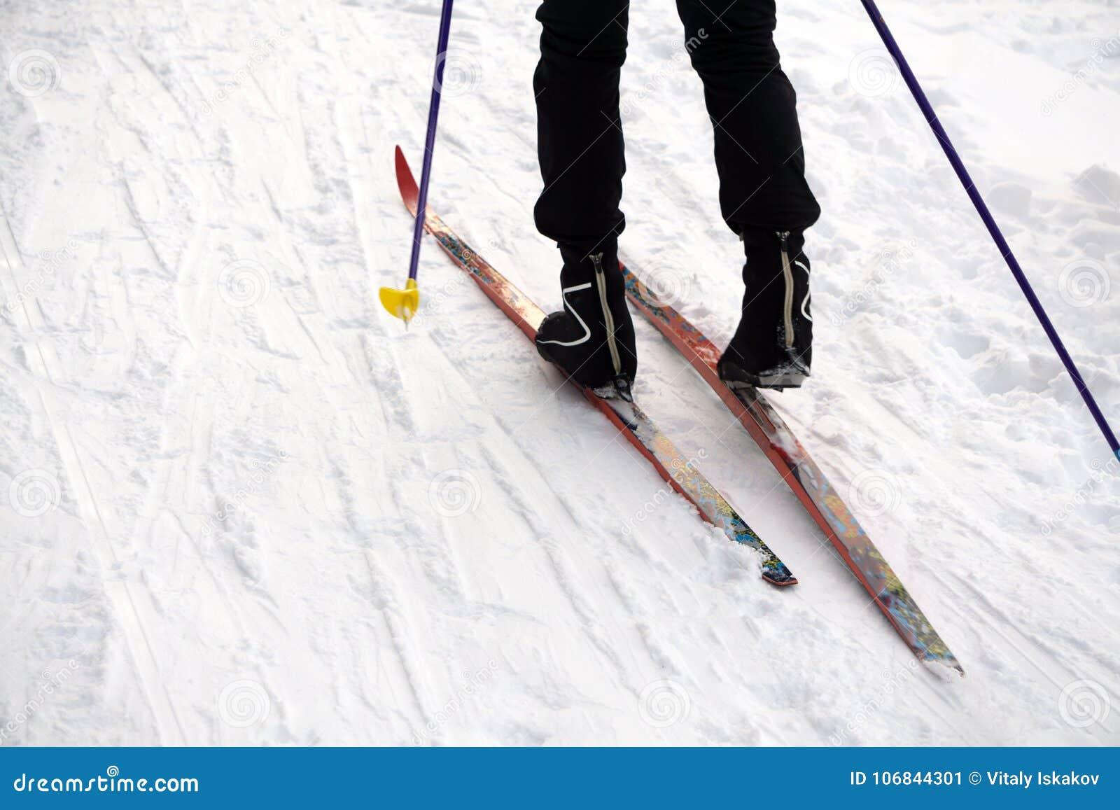Ski slope, skier in winter forest background