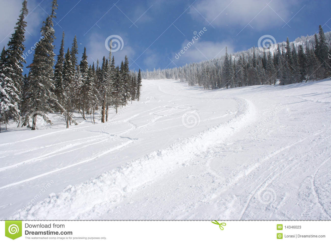 ski slope in the snow forest in sunny winter day stock