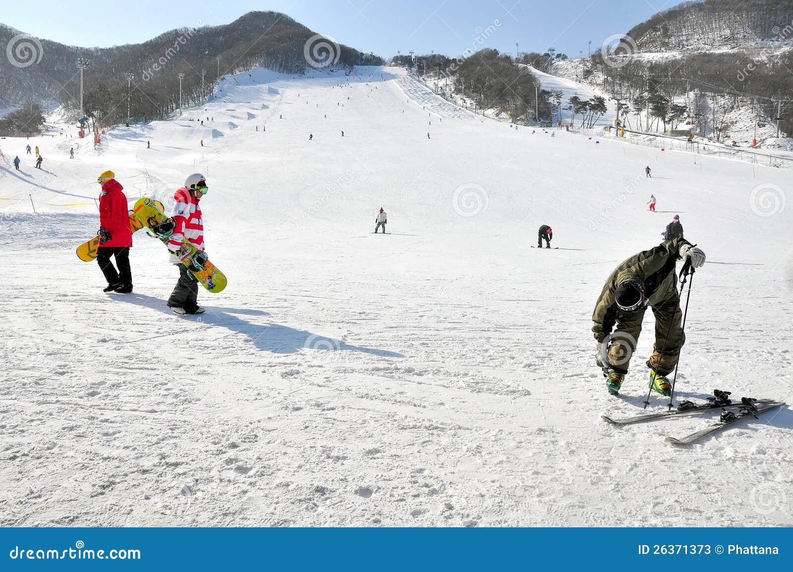 Skifahren und Snowboarding