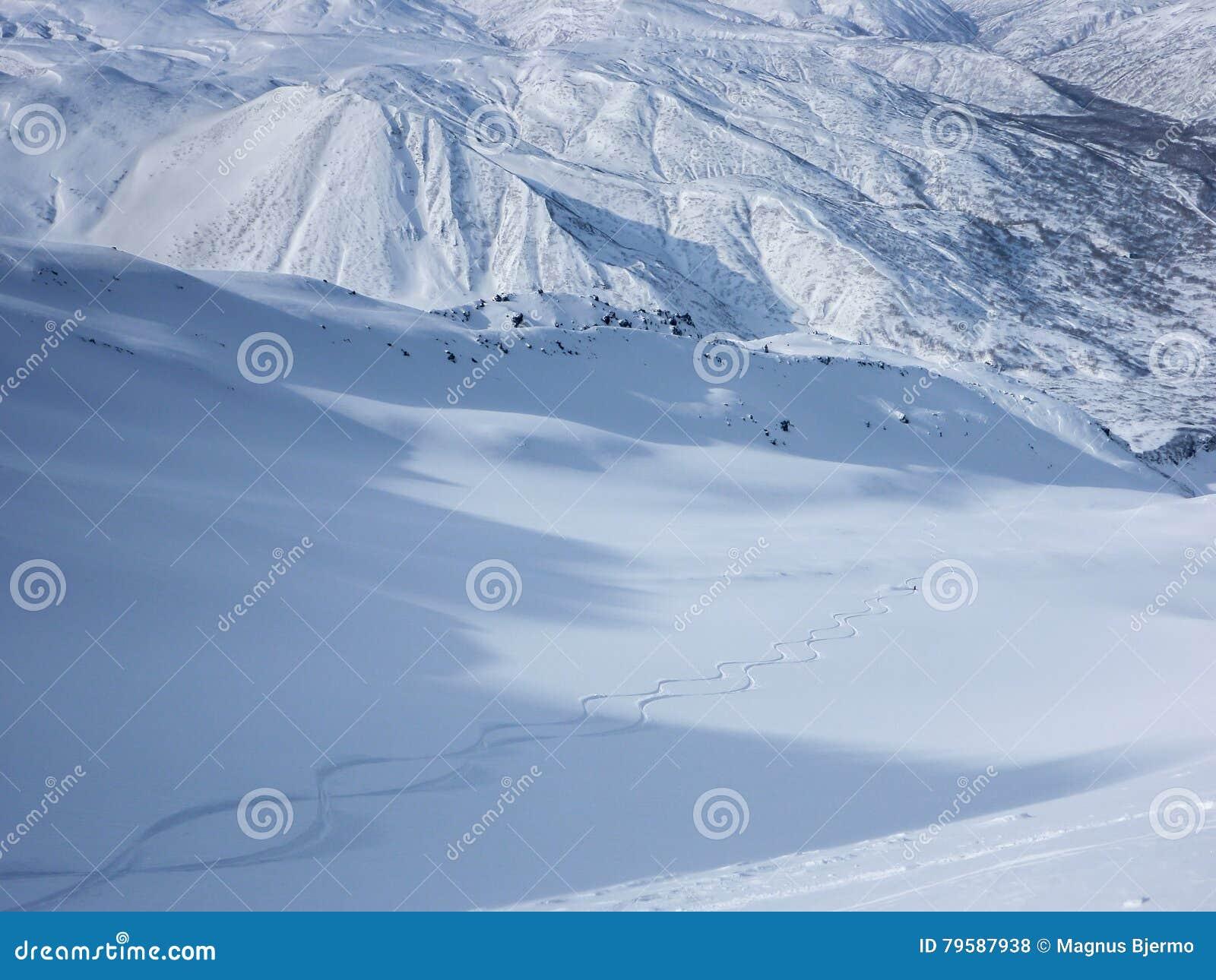 Skifahrer, der frische Bahnen im unberührten Schnee hinunter ein Tal macht